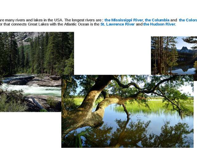 There are many rivers and lakes in the USA. The longest rivers are : the Miss...
