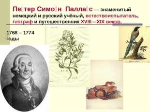 Пе́тер Симо́нПалла́с— знаменитый немецкий и русский учёный,естествоиспыта