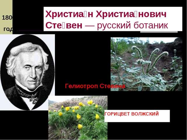 1800 – 1806 годы Христиа́н Христиа́нович Сте́вен—русскийботаник Гелиотроп...