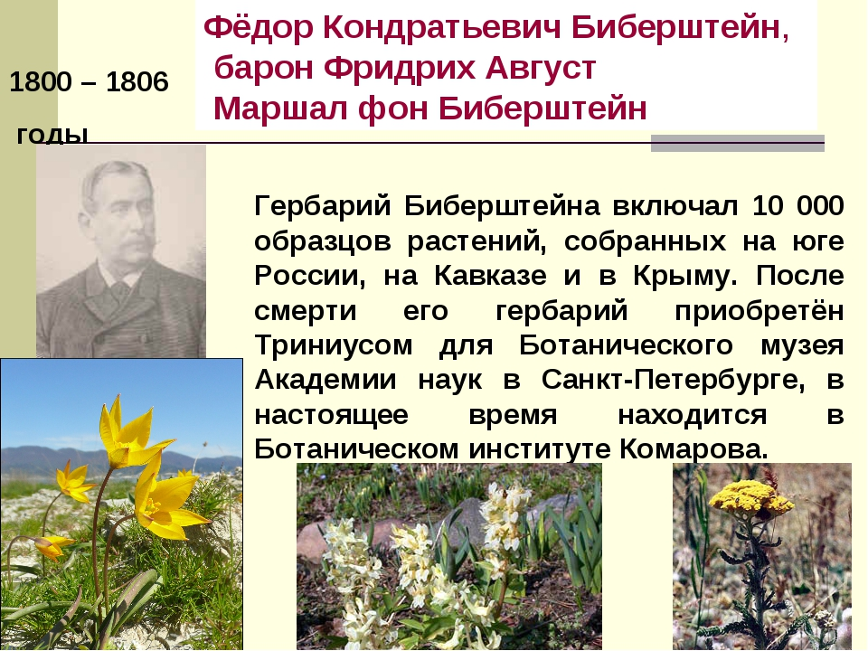 1800 – 1806 годы Фёдор Кондратьевич Биберштейн, барон Фридрих Август Маршал...