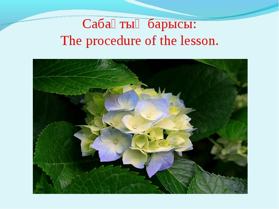 Сабақтың барысы: The procedure of the lesson.