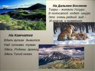 На Дальнем Востоке Тигры – жители Уссури _ В полосатой ходят шкуре. Это очен