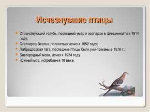 Исчезнувшие птицы Странствующий голубь, последний умер в зоопарке в Цинциннат