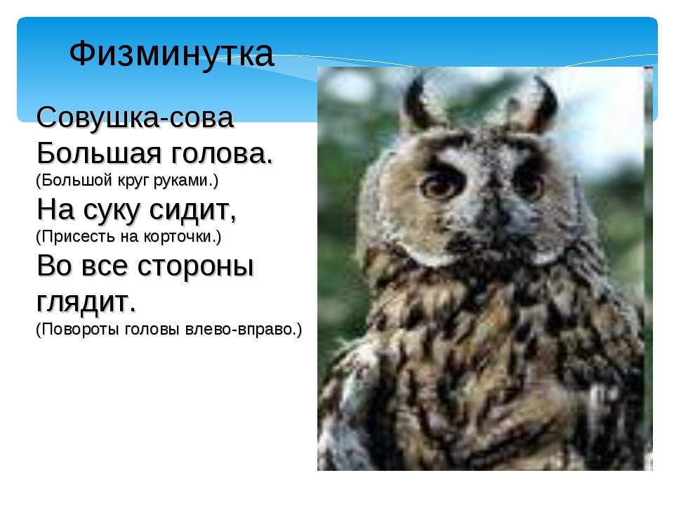 Совушка-сова Большая голова. (Большой круг руками.) На суку сидит, (Присесть...