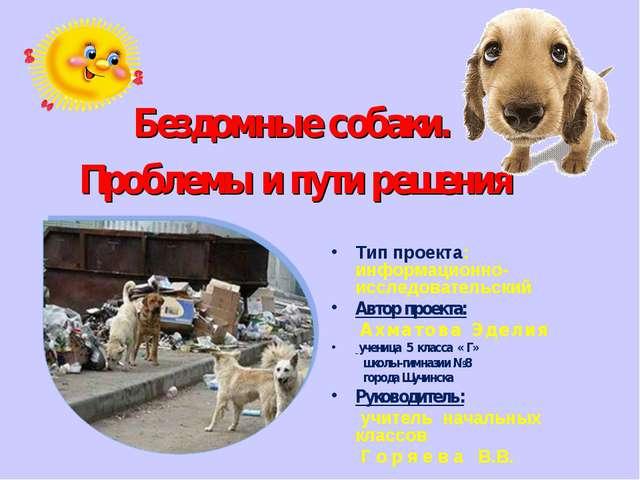 Бездомные собаки. Проблемы и пути решения Тип проекта: информационно-исследо...