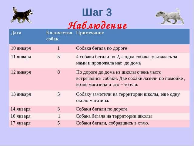 Шаг 3 Наблюдение ДатаКоличество собакПримечание 10 января1 Собака бегала...
