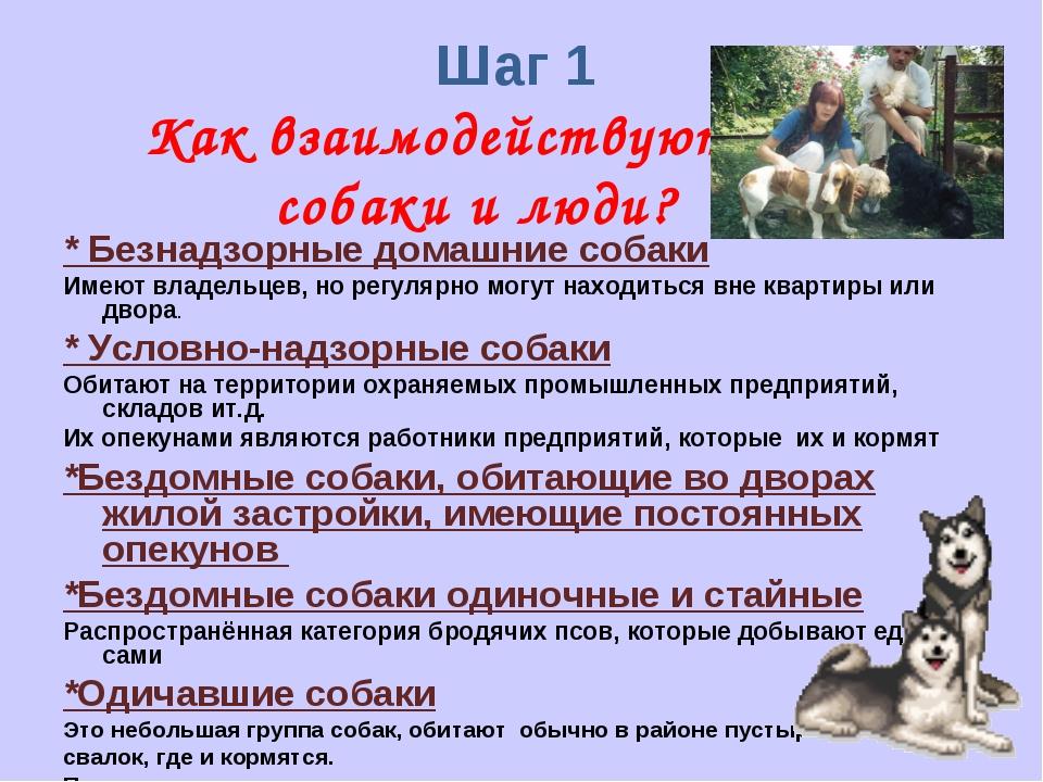 Шаг 1 Как взаимодействуют собаки и люди? * Безнадзорные домашние собаки Имею...