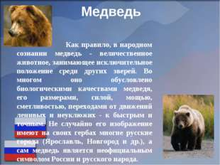 Медведь Как правило, в народном сознании медведь - величественное животное, з