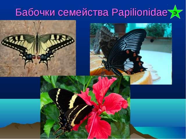 Бабочки семейства Papilionidae Э