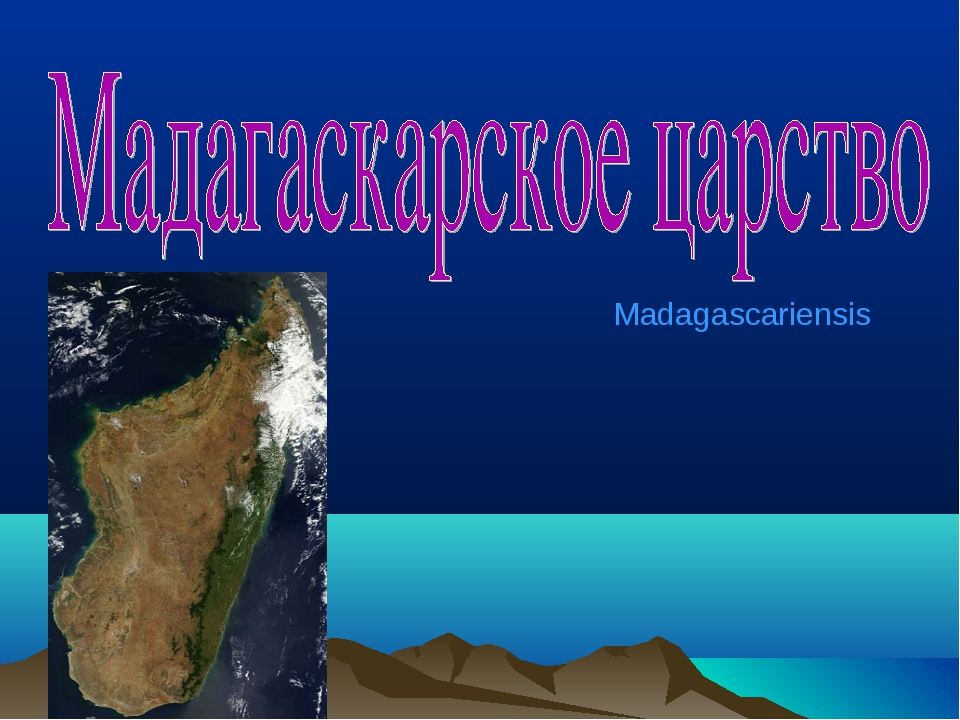 Madagascariensis