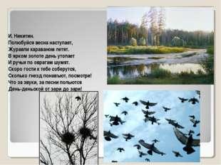 И. Никитин. Полюбуйся весна наступает, Журавли караваном летят. В ярком золот