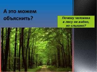 Почему человека в лесу не видно, но слышно?