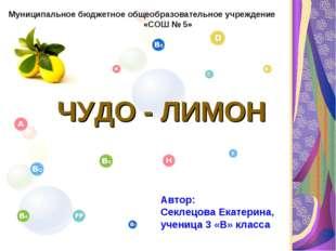 ЧУДО - ЛИМОН Муниципальное бюджетное общеобразовательное учреждение «СОШ № 5
