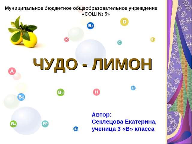 ЧУДО - ЛИМОН Муниципальное бюджетное общеобразовательное учреждение «СОШ № 5...