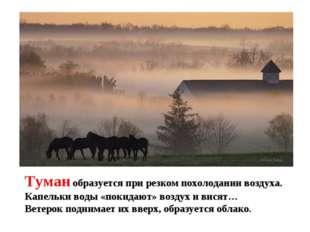 Туман образуется при резком похолодании воздуха. Капельки воды «покидают» воз