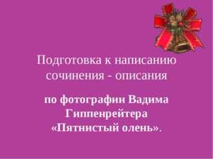 Подготовка к написанию сочинения - описания по фотографии Вадима Гиппенрейтер