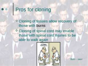Pros for cloning Cloning of tissues allow recovery of those with burns Clonin