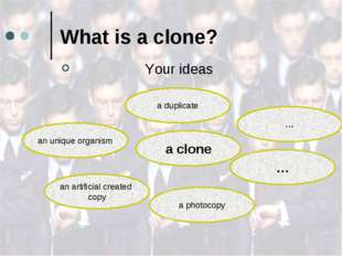 What is a clone? Your ideas a clone an unique organism a duplicate … … a phot