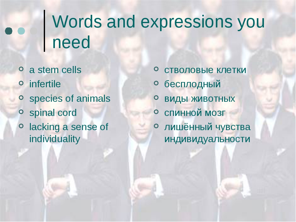 Words and expressions you need a stem cells infertile species of animals spin...