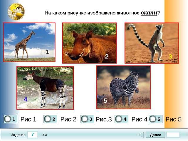 7 Задание На каком рисунке изображено животное окапи? Рис.1 Рис.2 Рис.3 Рис.4...