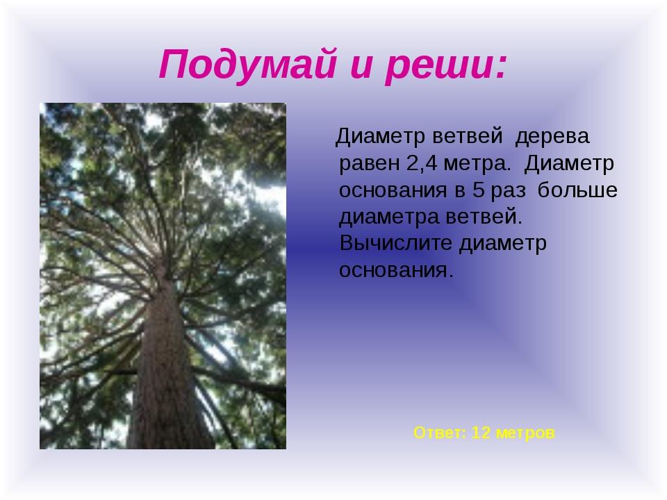 Подумай и реши: Диаметр ветвей дерева равен 2,4 метра. Диаметр основания в 5...