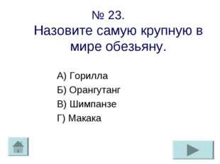 № 23. Назовите самую крупную в мире обезьяну. А) Горилла Б) Орангутанг В) Шим