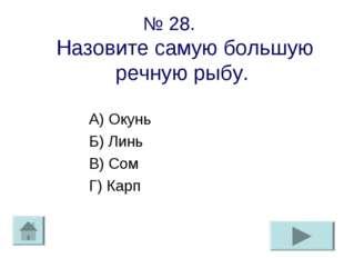 № 28. Назовите самую большую речную рыбу. А) Окунь Б) Линь В) Сом Г) Карп