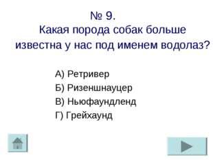 № 9. Какая порода собак больше известна у нас под именем водолаз? А) Ретривер