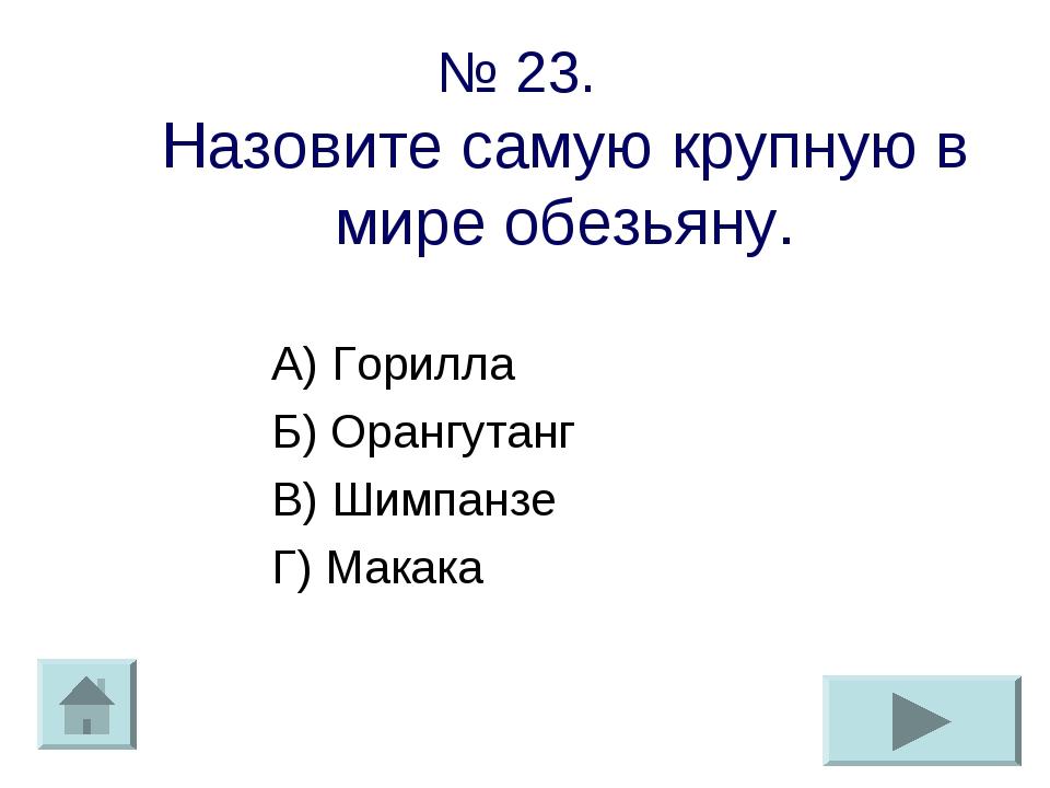 № 23. Назовите самую крупную в мире обезьяну. А) Горилла Б) Орангутанг В) Шим...