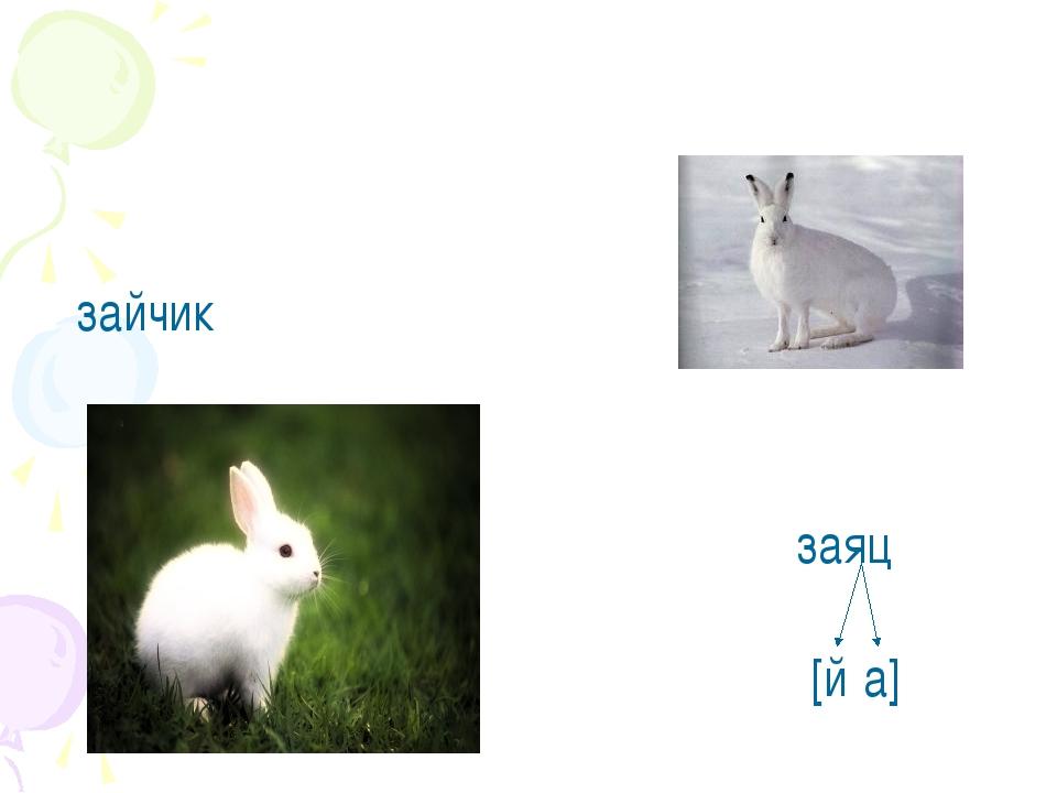 зайчик заяц [й'а]