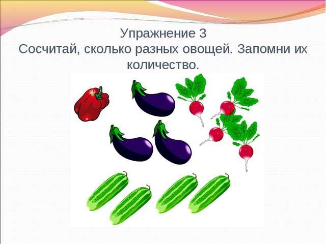 Упражнение 3 Сосчитай, сколько разных овощей. Запомни их количество.