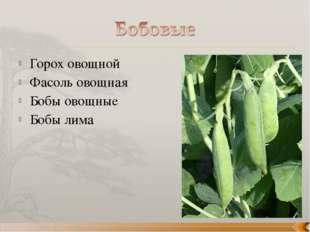 Горох овощной Фасоль овощная Бобы овощные Бобы лима