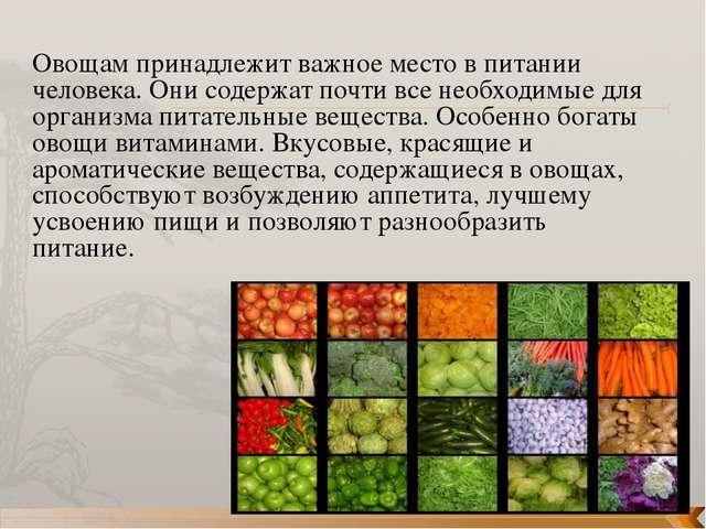 Овощам принадлежит важное место в питании человека. Они содержат почти все не...