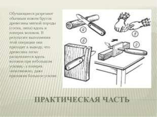 Обучающиеся разрезают обычным ножом брусок древесины мягкой породы (сосна, ли
