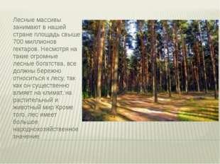 Лесные массивы занимают в нашей стране площадь свыше 700 миллионов гектаров.