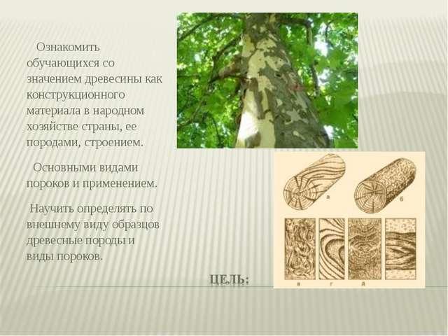Ознакомить обучающихся со значением древесины как конструкционного материала...