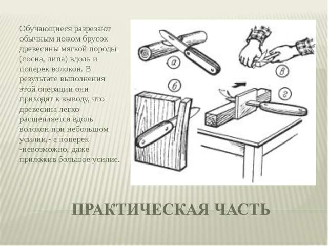 Обучающиеся разрезают обычным ножом брусок древесины мягкой породы (сосна, ли...