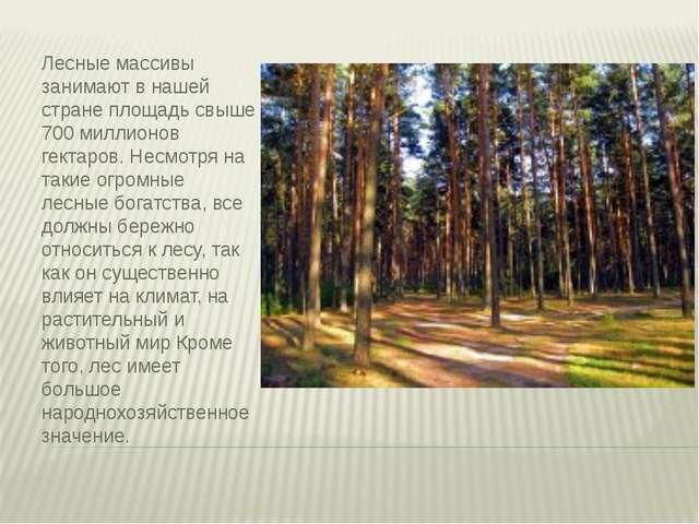 Лесные массивы занимают в нашей стране площадь свыше 700 миллионов гектаров....