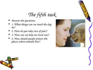 The fifth task Answer the questions: 1. What things can we teach the dog do?