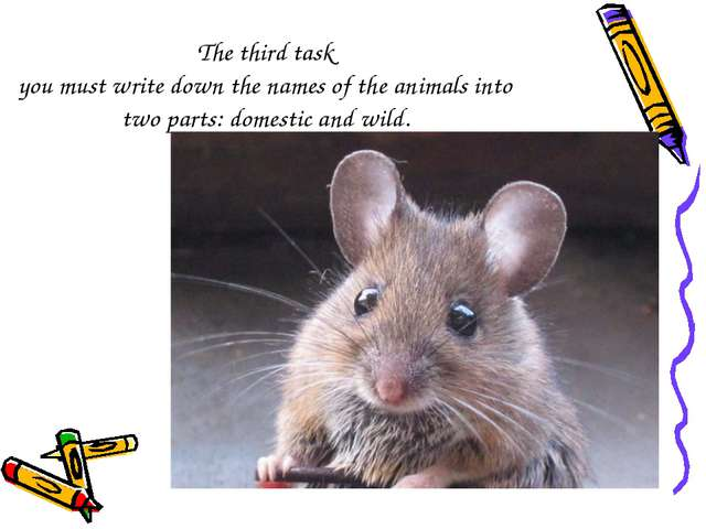 The third task you must write down the names of the animals into two parts: d...