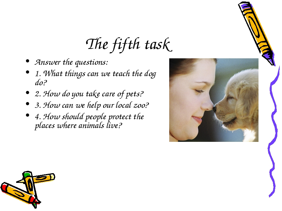 The fifth task Answer the questions: 1. What things can we teach the dog do?...