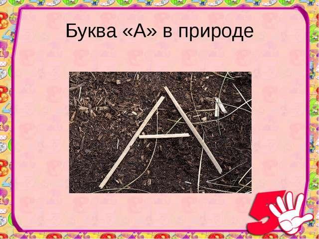 Буква «А» в природе