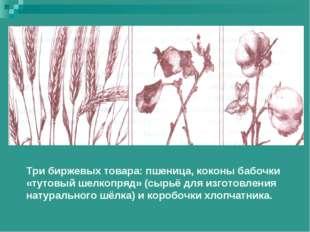 Три биржевых товара: пшеница, коконы бабочки «тутовый шелкопряд» (сырьё для и