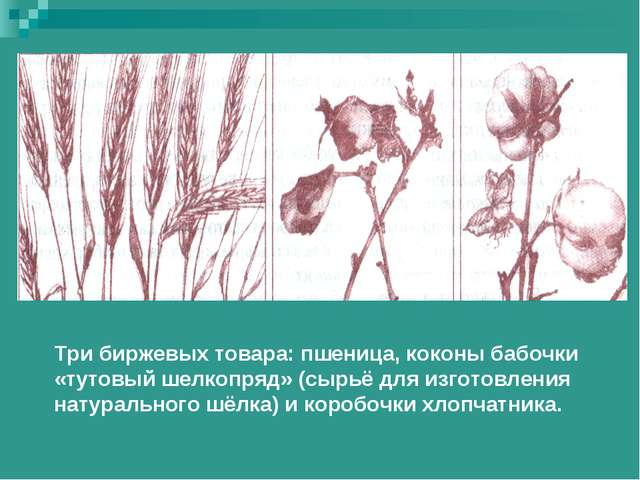Три биржевых товара: пшеница, коконы бабочки «тутовый шелкопряд» (сырьё для и...