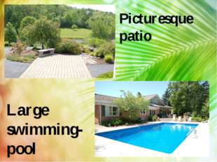 Picturesque patio Large swimming-pool