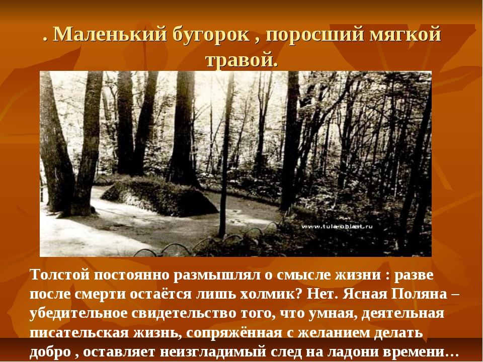 . Маленький бугорок , поросший мягкой травой. Толстой постоянно размышлял о с...