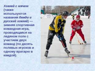 Хоккей с мячом (также используются названия бенди и русский хоккей) — зимняя