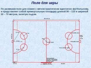Поле для игры По размерам поле для хоккея с мячом практически идентично футбо