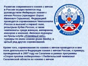 Развитие современного хоккея с мячом в России осуществляется под руководством