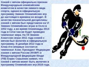 Хоккей с мячом официально признан Международным олимпийским комитетом в качес